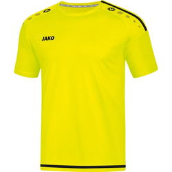 Striker 2.0 Trainings T-Shirt ab 19,99 €